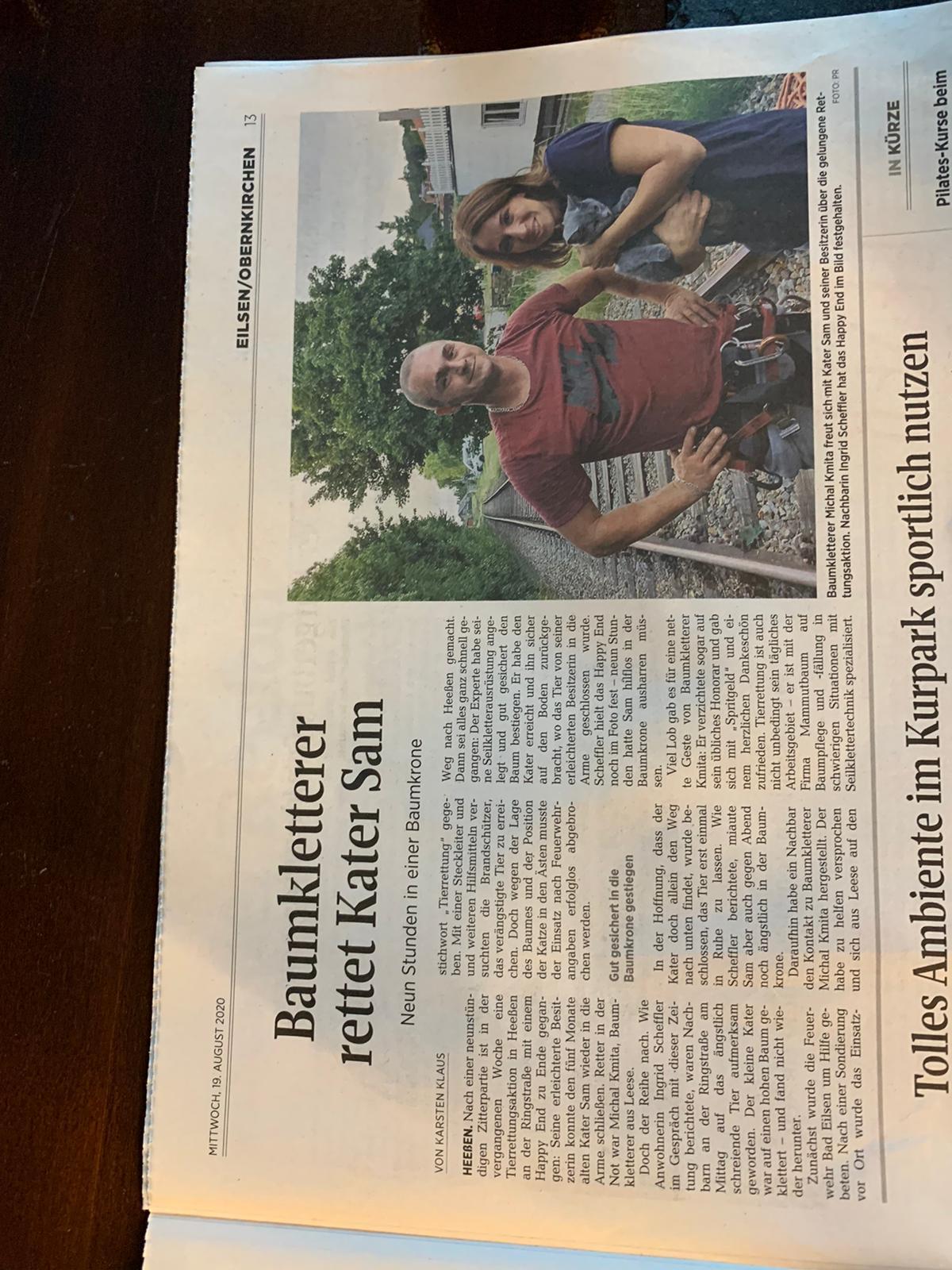 baumpflege hannover artikel